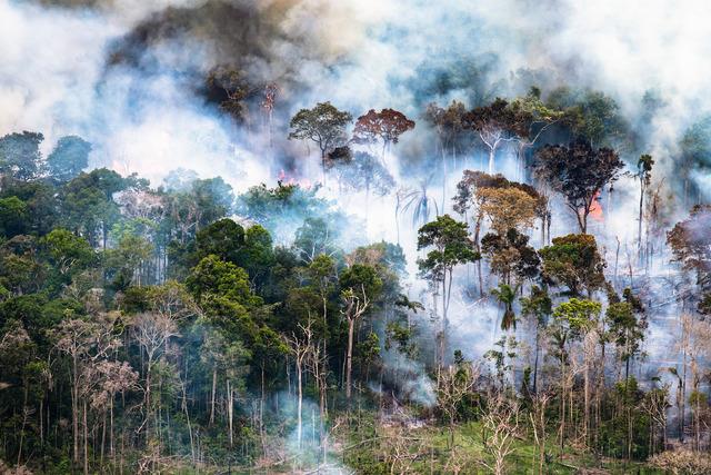 , 'Amazon rainforest burns (#260),' 2018, Catherine Edelman Gallery