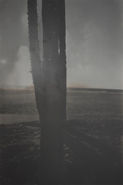 , 'P.V.-V.B.-16 (f),' 2016, ROSEGALLERY