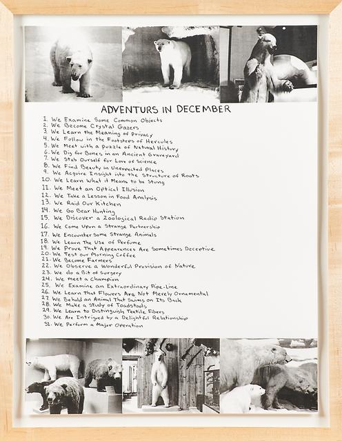 Mark Dion, 'Adventures in December', 1999, Rago/Wright
