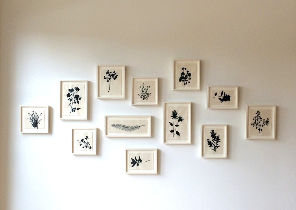 Installation image of Dharma Strasser MacColl: Adaptations