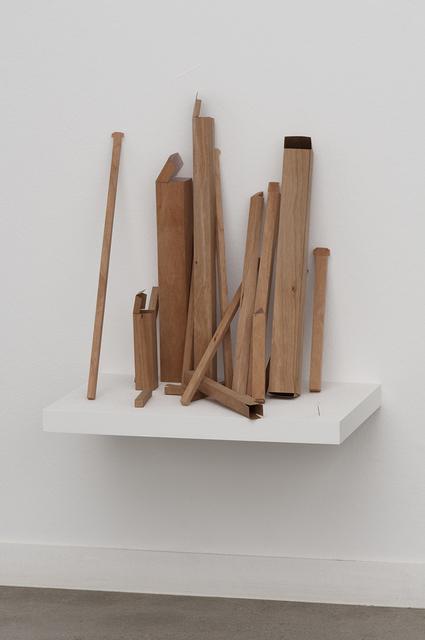 , 'Arvore modular [Modular tree],' 2009, Galeria Luisa Strina