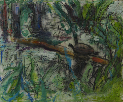 , 'Turtle,' , Zenith Gallery