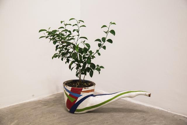 """, '""""Pipe Plant With Mandarin"""",' 2000, SGR Galería"""