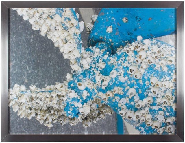Unknown, 'Boat Propeller Barnacles, Large Scale Photograph', Late 20th Century, Lions Gallery