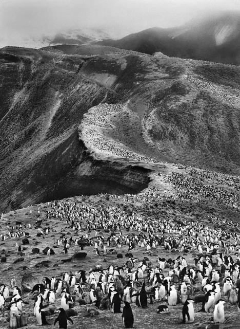 , 'Deception Island - Antartica,' 2005, Silvia Cintra + Box 4