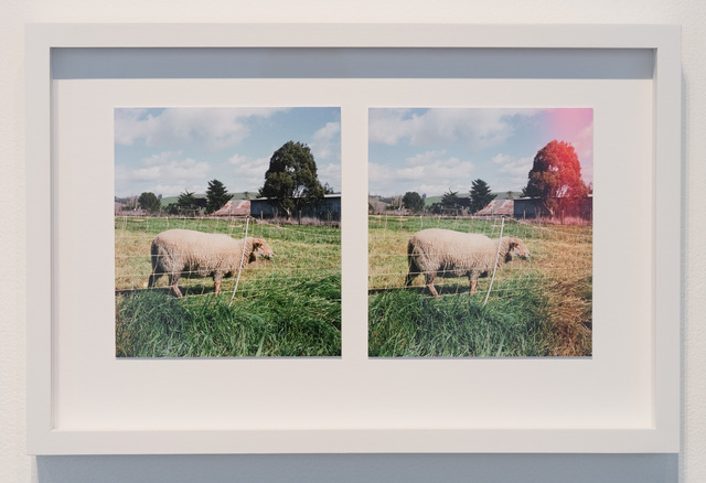 , 'Lambscapes Stereo #1,' 2017-2018, Gallery 16