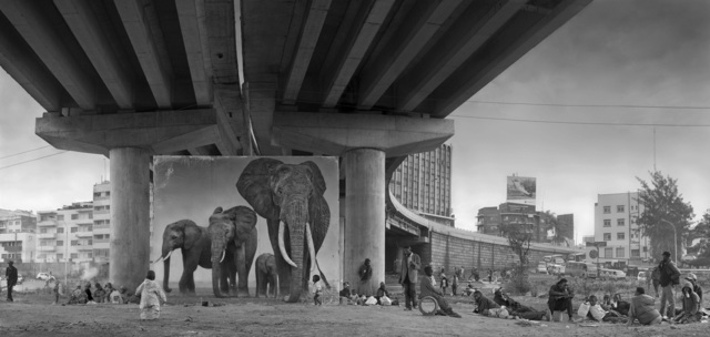 , 'Underpass with Elephants (Lean Back, Your Life is on Track),' 2015, Holden Luntz Gallery