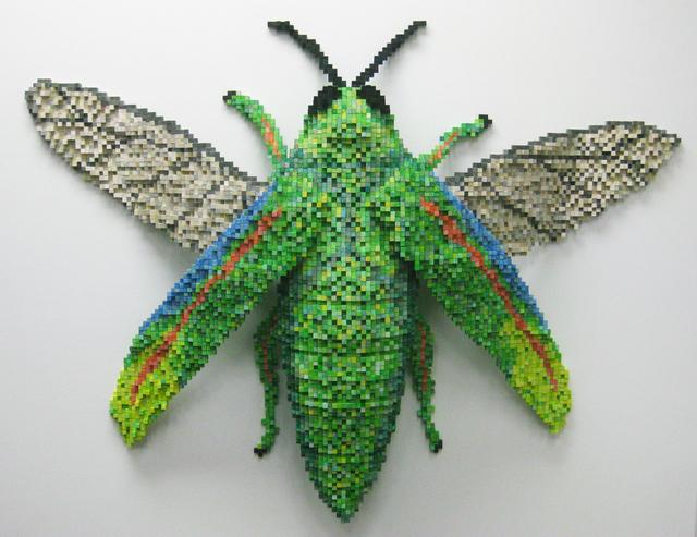 Shawn Smith, 'Jewel Beetle,' 2013, Turner Carroll Gallery