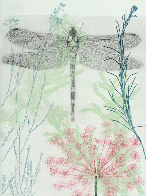 , 'Dragonfly and pink euphorbia,' 2019, Queenscliff Gallery & Workshop
