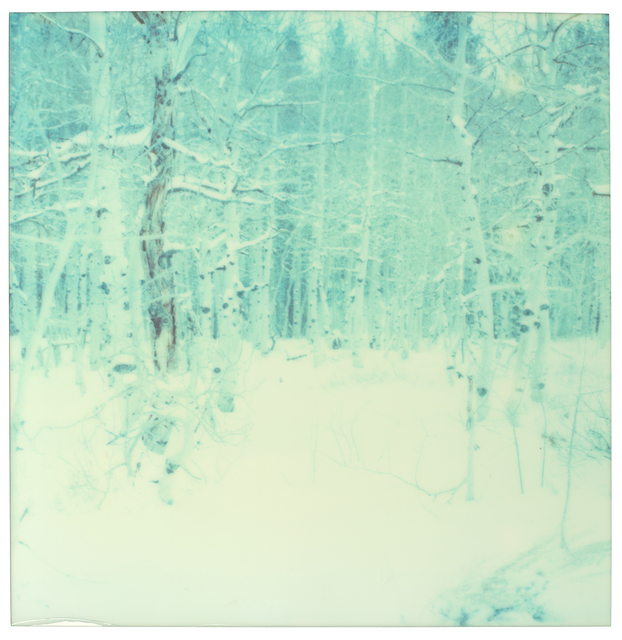 Stefanie Schneider, 'Winter - everything', 2003, Photography, Analog C-Print, hand-printed by the artist on Fuji Crystal Archive Paper, based on a Polaroid, not mounted, Instantdreams