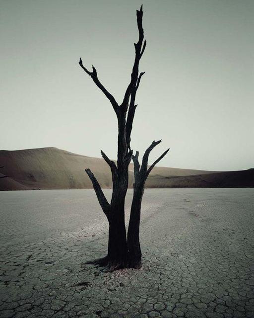 , 'IV 473 - Dead Vlei, Sossusvlei Namibia,' 2011, AbrahamArt