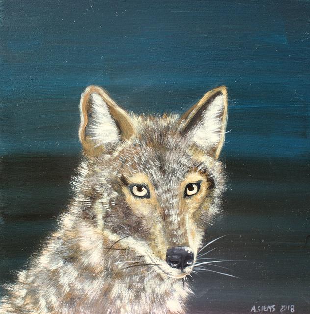 , 'Jackal,' , Gail Severn Gallery