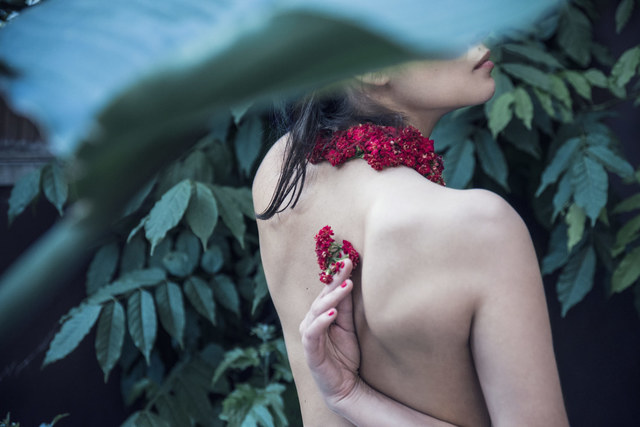 , 'Kalanchoe Blossfeldiana,' 2016, Fifty Dots