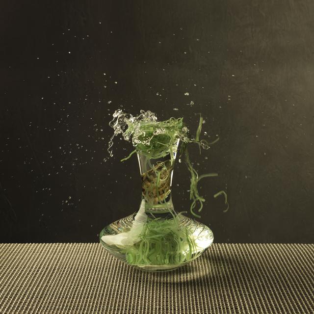 , 'Seaweed & Oyster,' 2013, SmithDavidson Gallery