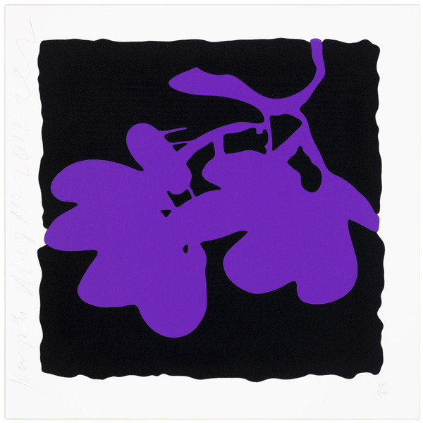 , 'Lantern flowers - Purple,' 2012, Vertu Fine Art