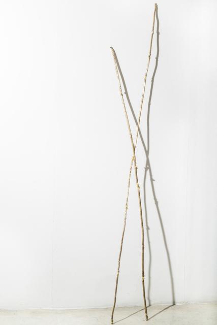 , 'Un senyal amb dues tiges,' 2014, maserre +R