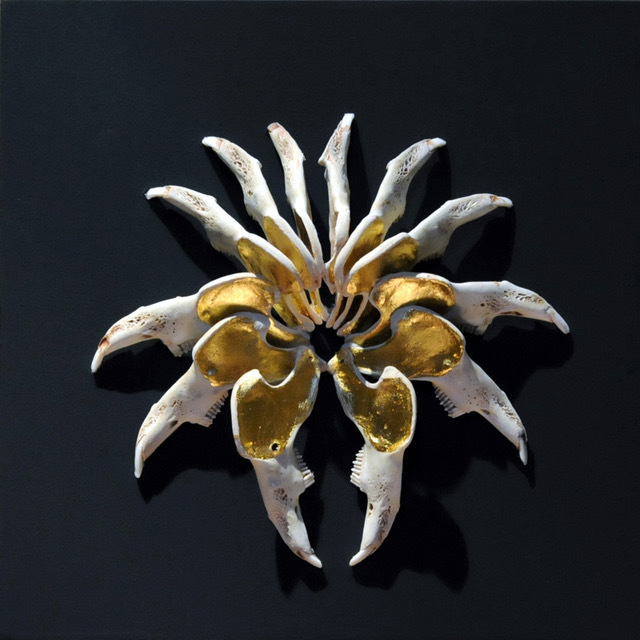 , 'Golden Jaw,' 2011, Danielle Arnaud Contemporary Art