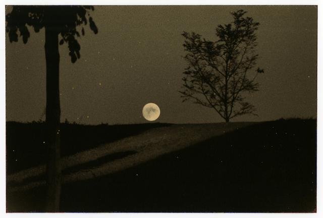 Yamamoto Masao, '1079, from Nakazora', 2003, Photography, Gelatin silver print with mixed media, Etherton Gallery