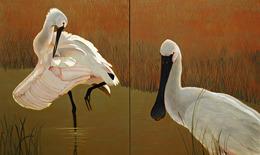 , 'Eurasian Spoonbill,' 2012, Walter Wickiser Gallery