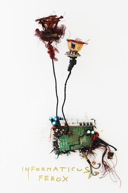 , 'Informaticus Ferox,' 2017, Sapar Contemporary