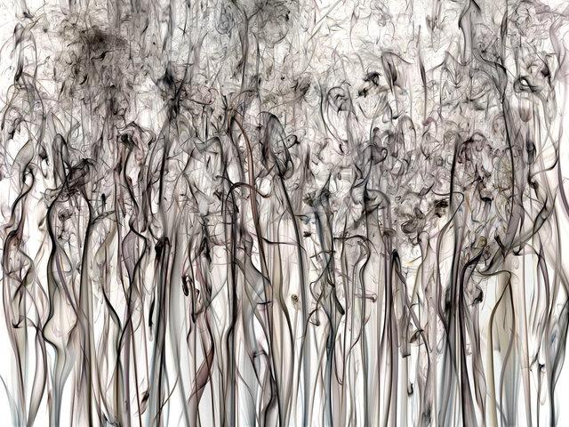 , 'Perception 17,' 2017, Litvak Contemporary