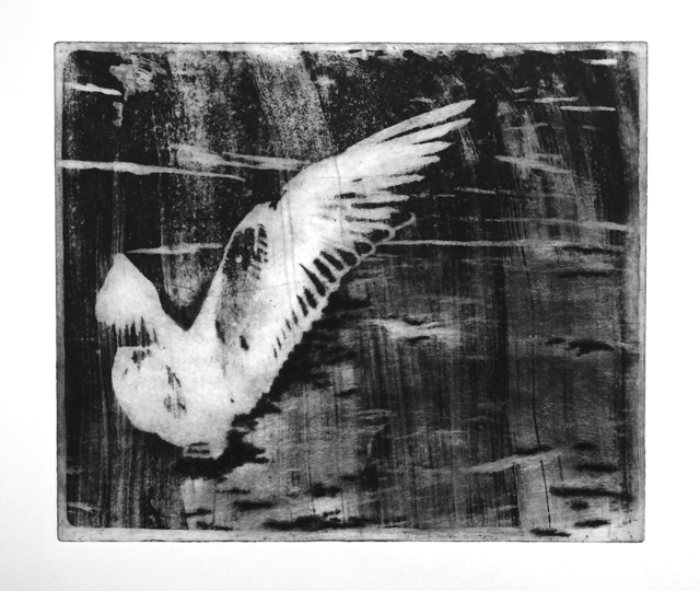 Mediha Didem Türemen, 'Seagull', 2016, Mixer
