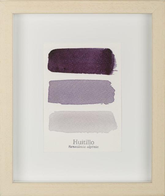 , 'Serie Huitillo III,' 2015, Galería de la Oficina