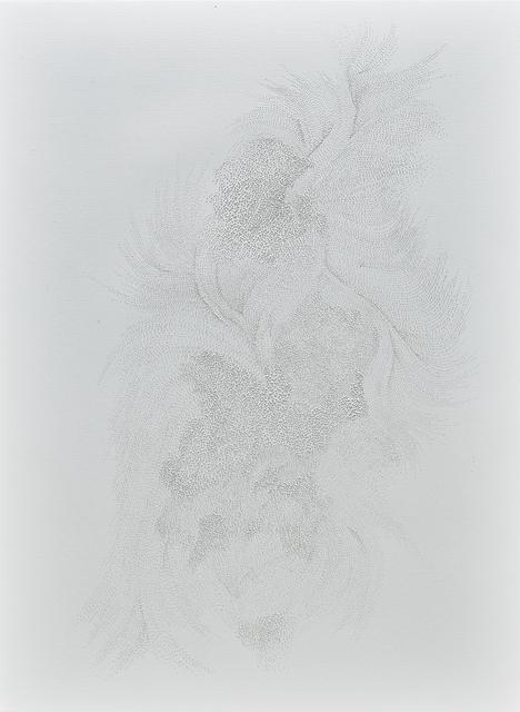 , 'I Tried to Camouflage (II),' 2017, A.I. Gallery