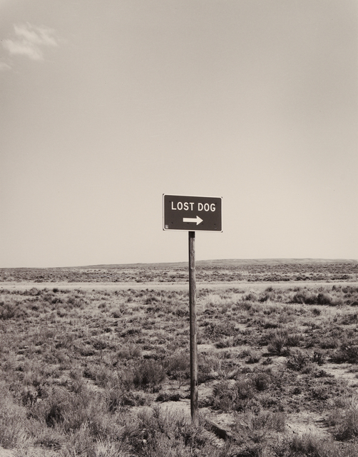 , 'Lost Dog, Nevada,' 1979, Seagrave Gallery