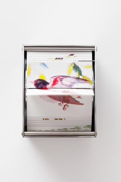, 'Passerine,' 2016, Carbono Galeria
