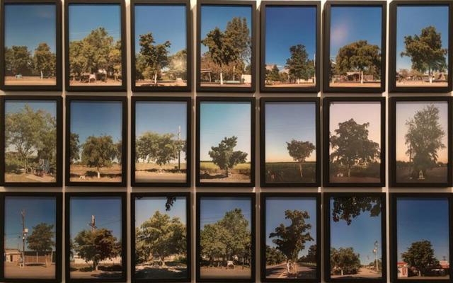 , '40 kilómetros,' 2014, Galerie Peter Kilchmann