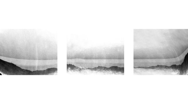 Rikke Flensberg, 'Matter and Space (Eruption)', 2015, Flowers