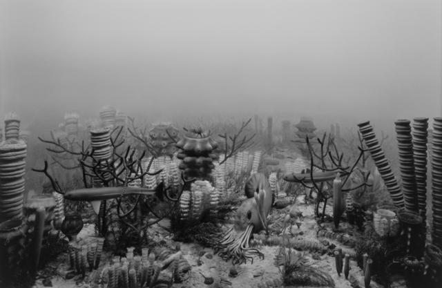 , 'Upper Devonian Period,' 1992, Fraenkel Gallery