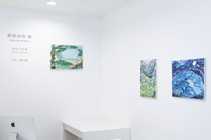 "Installation view from ""Sky-Eye Weaver"" 8/ ART GALLERY/ Tomio Koyama Gallery, 2016 ©Yuka Kashihara, photo by Kenji Takahashi"