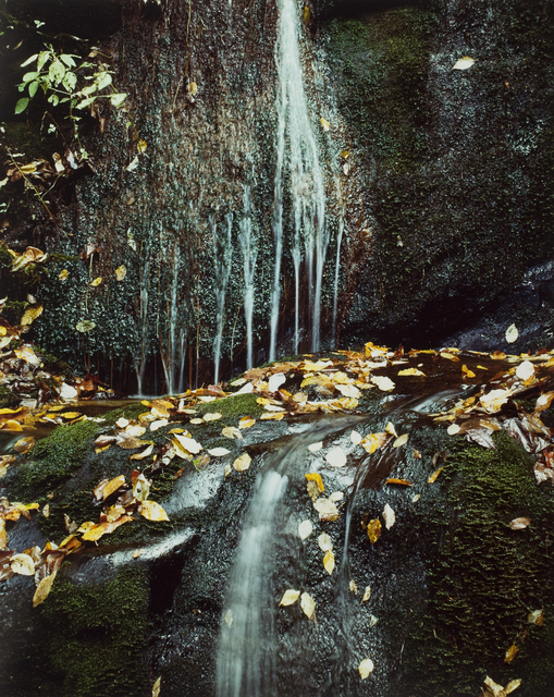 , 'Running water, Roaring Fork Road, Gt. Smoky Mts.,' October 10-1967, George Eastman Museum