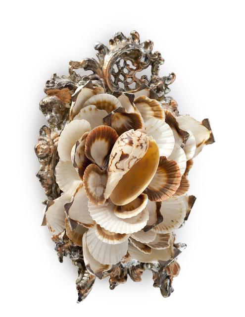 , 'Small Shell Series 28,' 2010, Bill Lowe Gallery