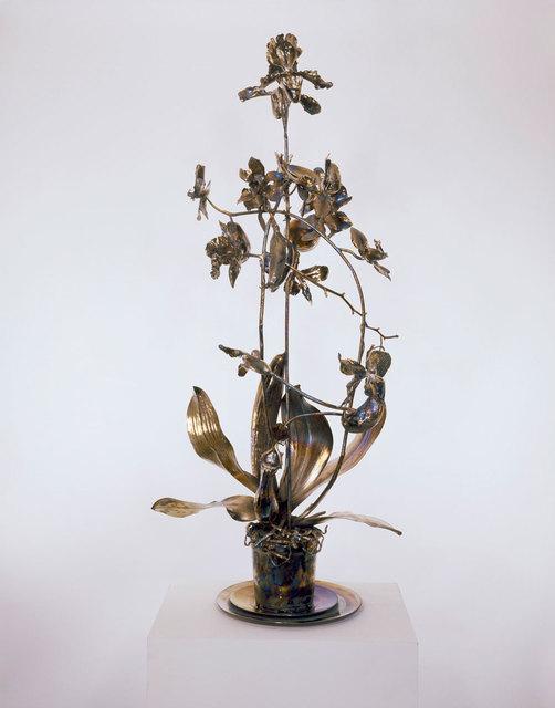 , 'The Nurseries of El Dorado,' 2008, Human Reproduction