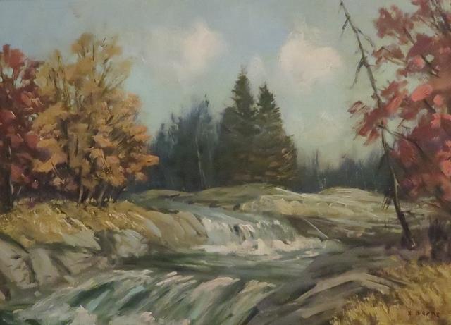 , 'Autumn Scene - Rapids,' , Arctic Experience McNaught Gallery