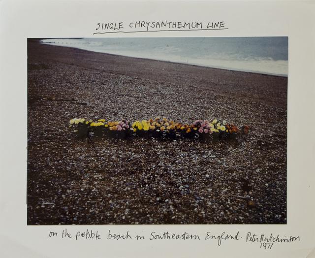 , 'Single Chrysanthemum Line,' 1971, Gaa Gallery