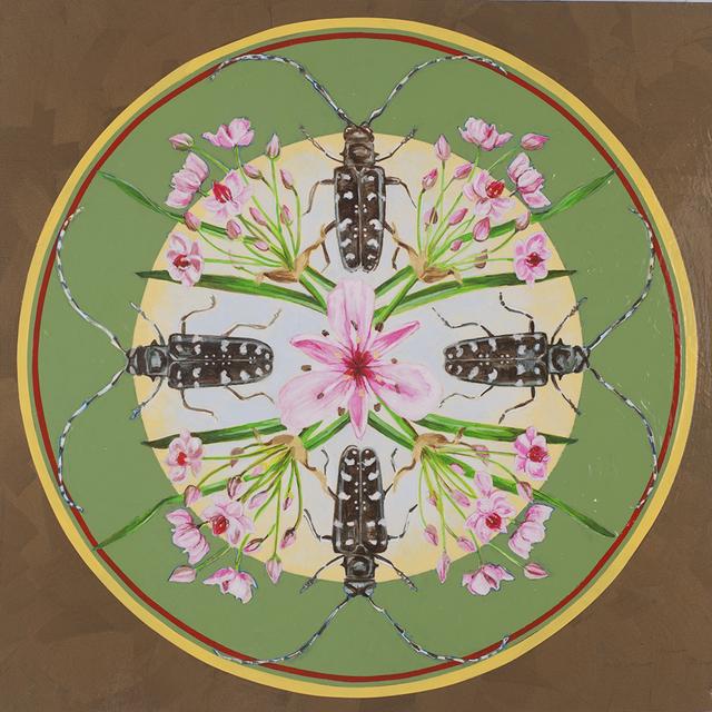 , 'Asian Longhorned Beetle, Flowering Bush,' 2018, Linda Hodges Gallery