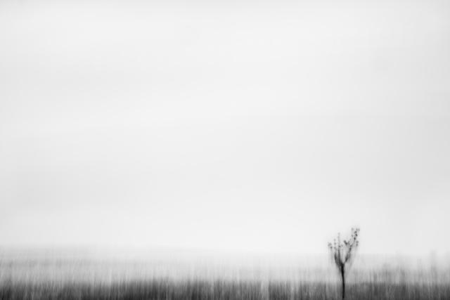 , 'ISO - 3 (Okoboji),' 2014, Specto Art Space