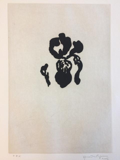 , 'Iris Negre IV,' 2002, Galerie AM PARK