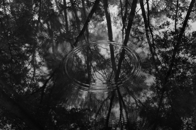Michael Berman, 'Circles In Water, from Perdido', ca. 2016, Etherton Gallery