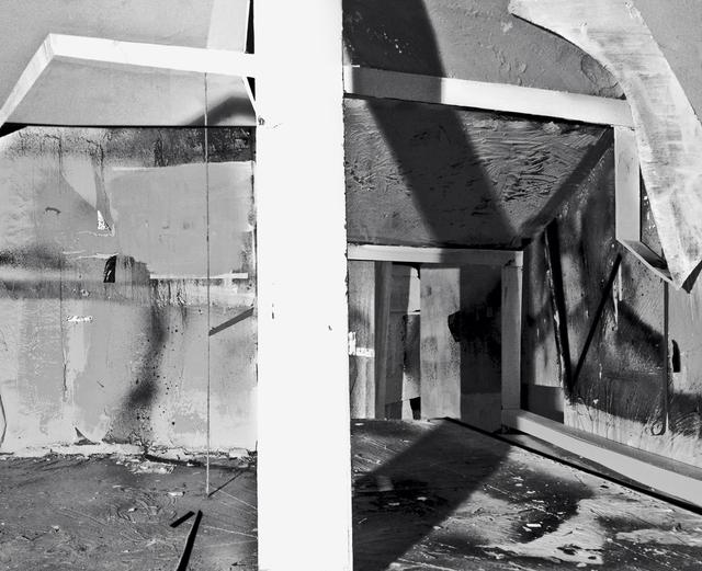Yamini Nayar, 'On Form and Growth', 2013, Photography, C-print, Jhaveri Contemporary