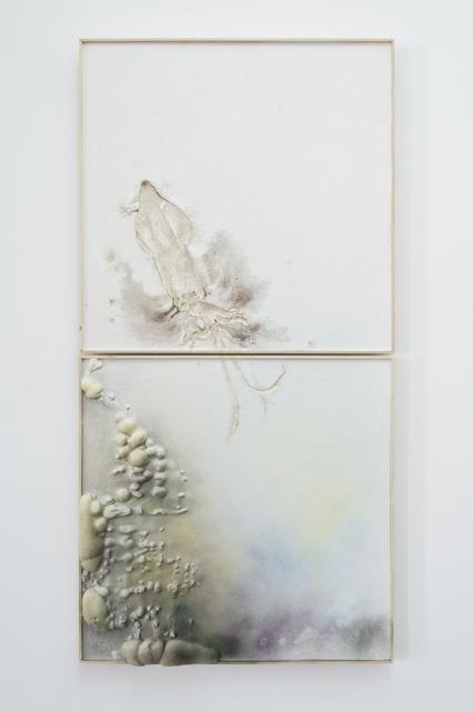 , 'La grande seiche II,' 2014, ProjecteSD