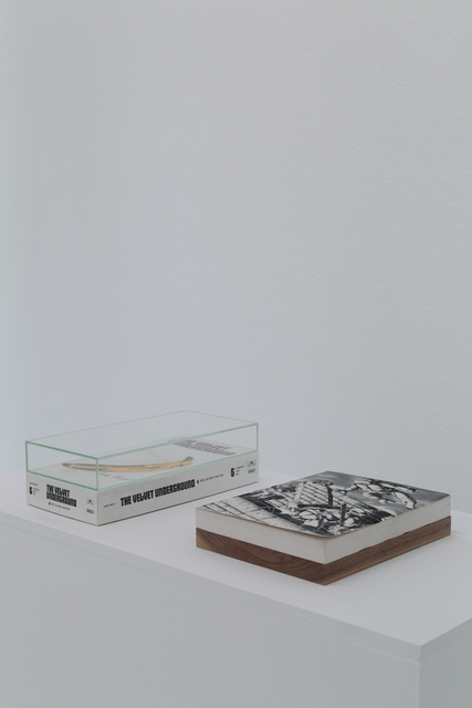 Richard Aldrich, 'Early obsessions paired with natural elements', Museum Dhondt-Dhaenens