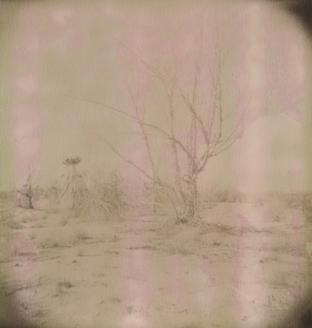 Stefanie Schneider, 'Untitled', 2009, Photography, Analog C-Print, hand-printed by the artist on Fuji Crystal Archive Paper, based on a Polaroid, not mounted, Instantdreams