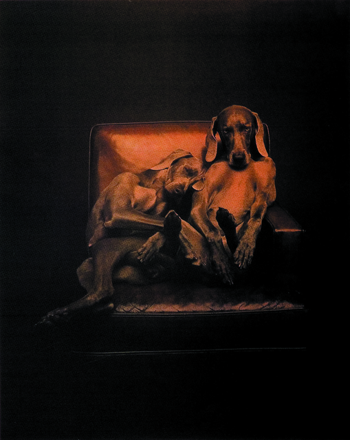 William Wegman, 'Best Buddies', 1993, Best Buddies International