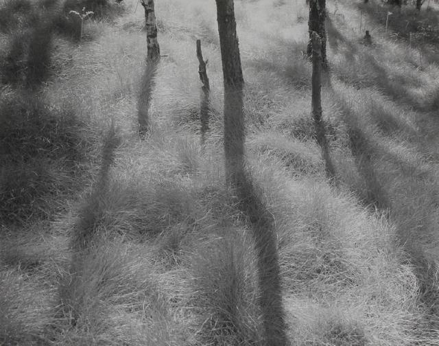 , 'Ambergate,' 1980, James Hyman Gallery