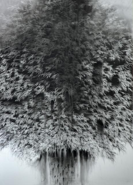 , 'g 19][73 d,' 2018, Massey Klein Gallery
